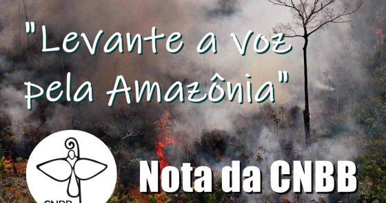 CNBB lança nota sobre situação da Amazônia