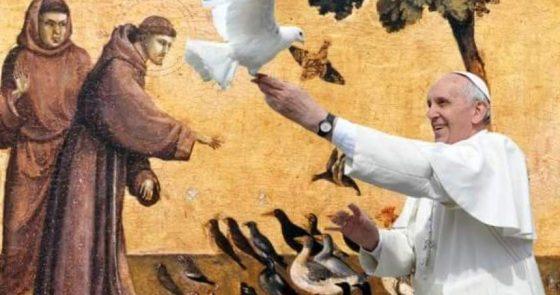 """Francisco de Roma, Francisco de Assis e a Laudato Si': um brado pela """"nossa irmã, a mãe Terra"""""""